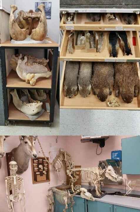 Photos taken for the Skeleton Crew article.